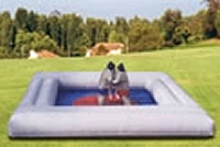 Inflatable Sumo Ring or Inflatable Gaga Pit